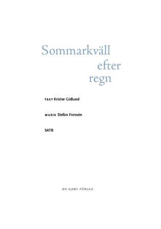 Sommarkvall_efter_regn
