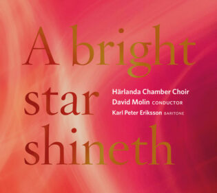 A bright star shineth